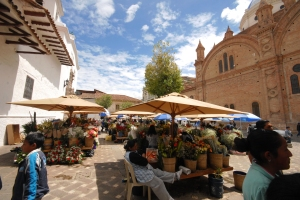 Cuenca Cathedral and petals